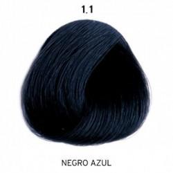 1/1 ColorEvo 100 ml.