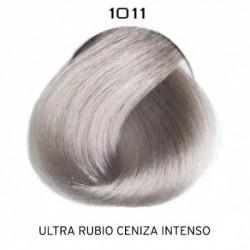 1011 ColorEvo 100 ml.